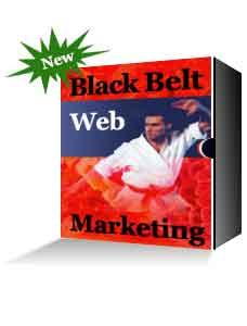 1 pc ebook - Black Belt Web Marketing - increase visitor to web site