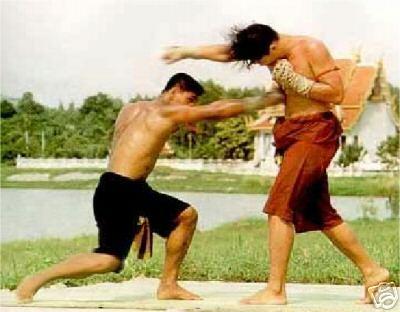 1 pc Ebook - Martial Art - Muay Thai Kick Boxing Guide