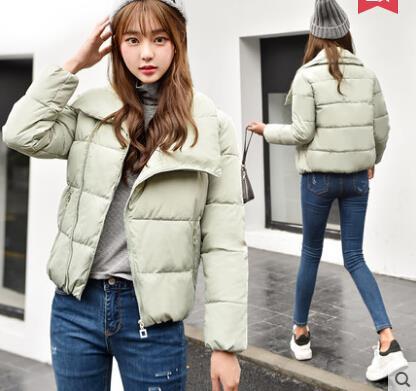 2017 Korean Style Woman Winter Jac (end 11/17/2018 11:15 AM)