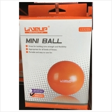 LineUp Fitness Yoga Ball 65CM (Fitness Gym Sport)