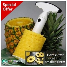 TV plastic pineapple slicer corer/cutter/peeler/remover/skinner/knife