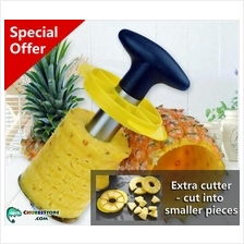 ASOTV stainless steel pineapple corer slicer/cutter/peeler/knife