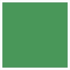 Seamless Paper Backdrop Background 2.72 x 11m ( Green )