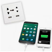 Dual USB Port Electric Wall Charger Dock Socket Power Outlet Panel Pla..