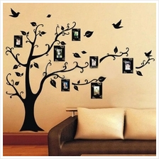 Photo Tree Wall Stickers Removable Decal Home Decor DIY Art Decoration