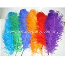 Ostrich Feather 60cm