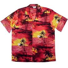 Hawaii Man Shirt 1016 0201