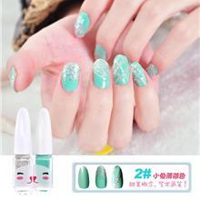 Bright Many Color DIY Nail Polish Set - 2#