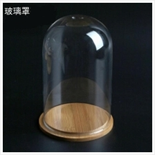 Glass Cover 9 X 20 Vase Container Dome with Tray Plant Flower Decor