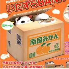Various Colour Cute Cat Steal Money Coin Box Cat Bank