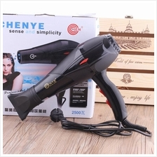 Blower Domestic Cold and Hot Wind Hair Salon Barber Hair Dryer 2500W S