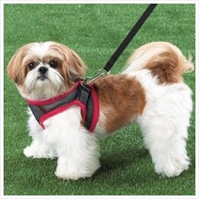 Comfy Control Mesh Chest Harness for Dogs + FREE Leash Included