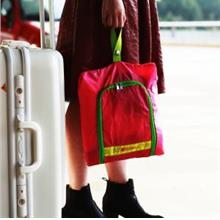 Travel Sports~Portable Foldable Thick Shoes Bag