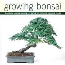 Ebooks : Thinking Of Growing a Bonsai ? This Is For You ! + 2 Bonuses