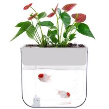 New White Indoor Aquaponics System Fish Bowl Jar Water Cultivation Far