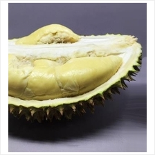 Pre-book XO Durian (Testing - don't buy)