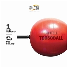 GINTELL Torsoball Total Body Training System)