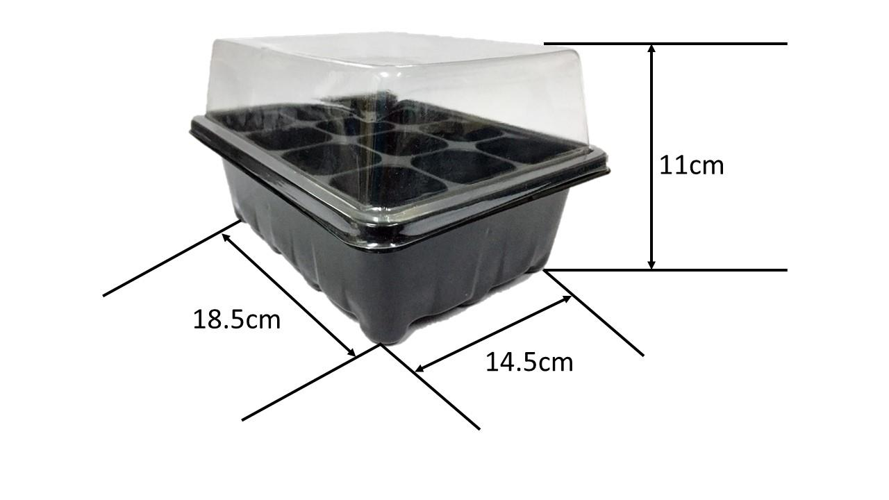 12 Compartment Germination Box