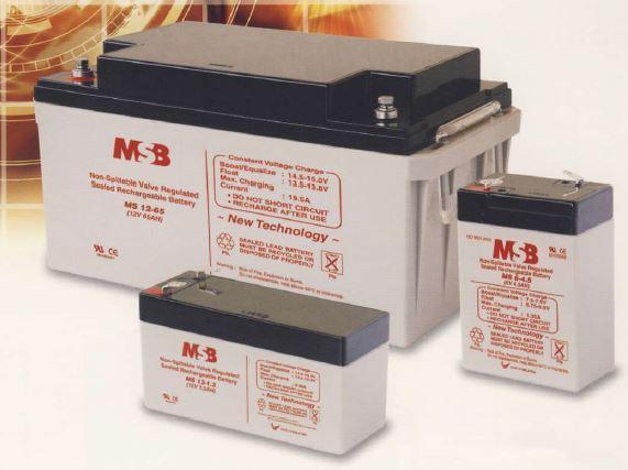 12V/40AH Maintenance Free VRLA Battery