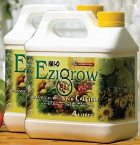 2 Bottles Ezigrow Foliar Baja Grow Bigger Fertilizer 8L FREE DELIVERY