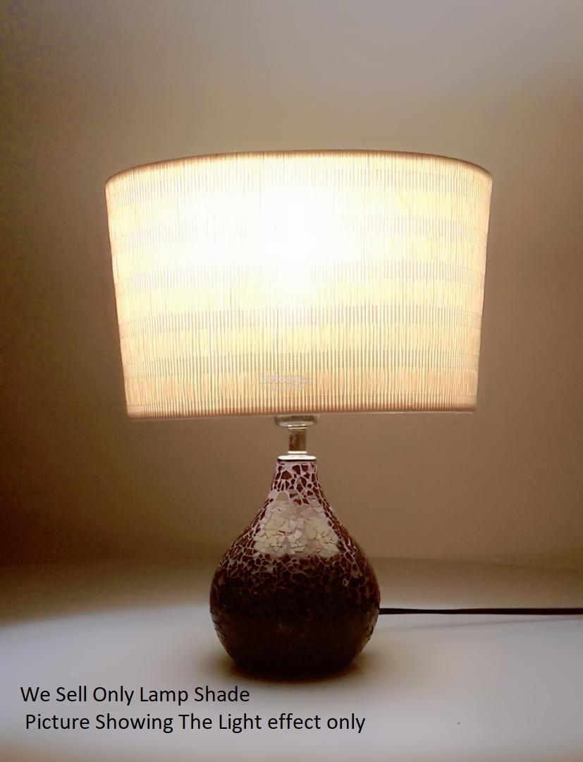 24CM Antique Lamp Shade