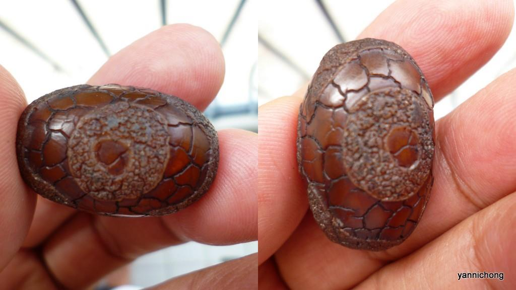 3 EYE DRAGON SKIN OLD DZI  BEAD