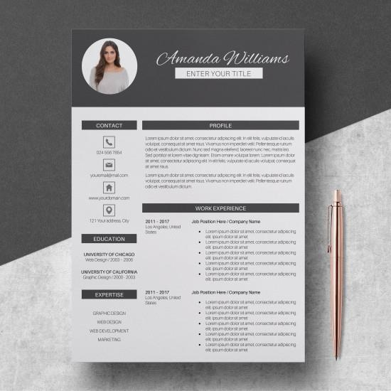 330 Sets English Professional Resume Templates | Microsoft Words