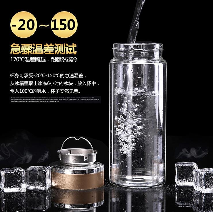 NEW! 350ml Double Layer Glass Tea Bottle Mug with Infuser