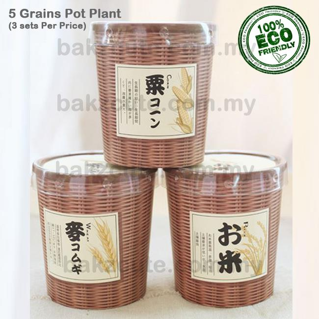 (3pcs / set) 5 Grains Cultivation DIY TablePotPlant Set -Rice+Corn+Oat