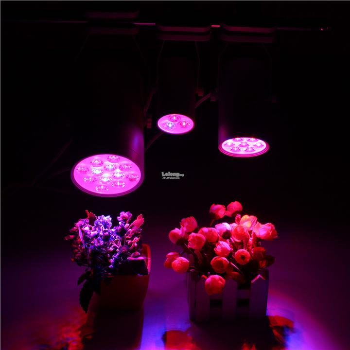 archives select category light lights plant intensity proper thumb led up