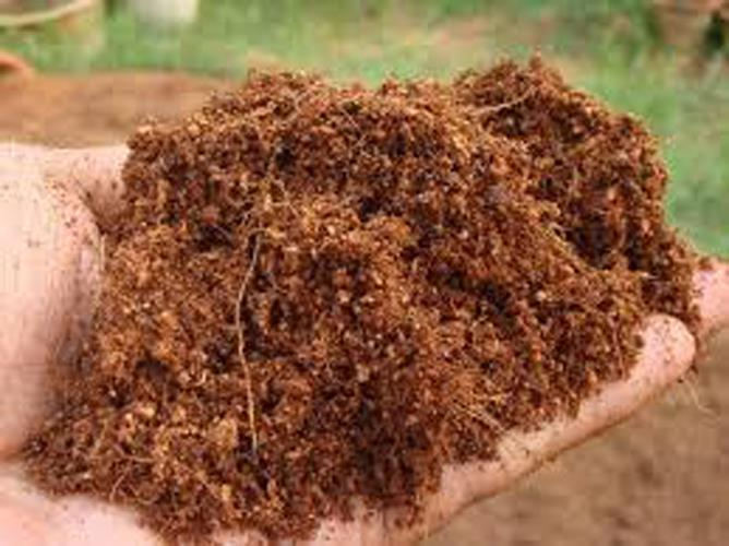 400g coconut husk powder for plant end 2 25 2019 3 15 pm for What is dirt made out of
