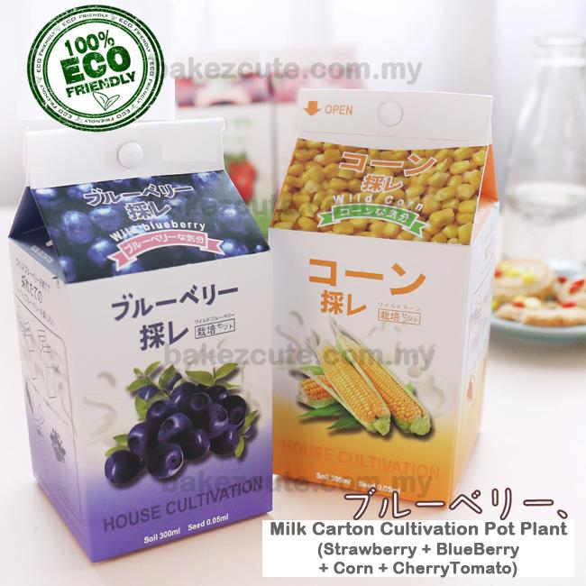 (4pcs/set) Berry & Vege in Milk Cartons DIY Table Pot Plant