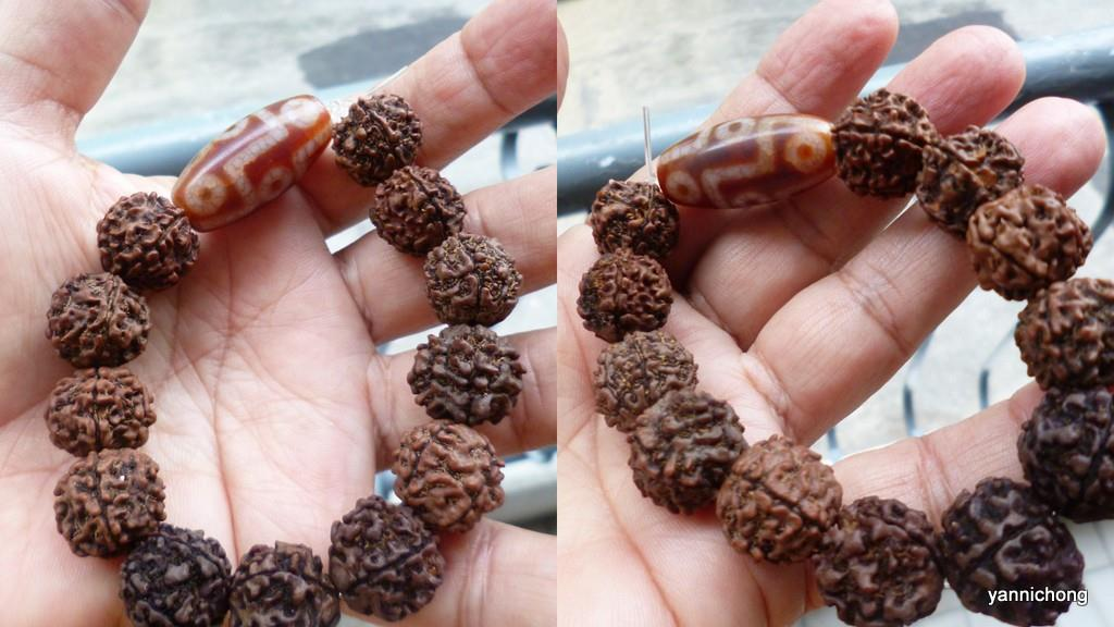 9 EYE DZI WITH 5 FACE RUDRAKSHA BEADS