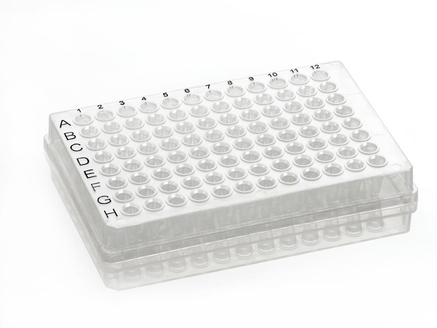 96 well semi skirted PCR plate, natural colour