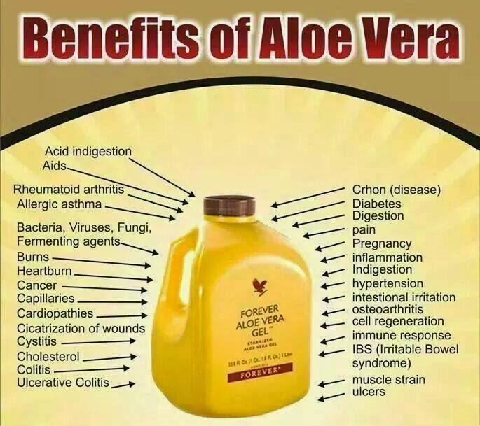 Effects Of Drinking Aloe Vera Gel