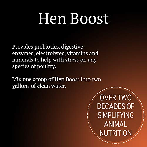 Animal Health Solutions - Hen Boost Probiotics, Help Boost Immunity  & Hydrati