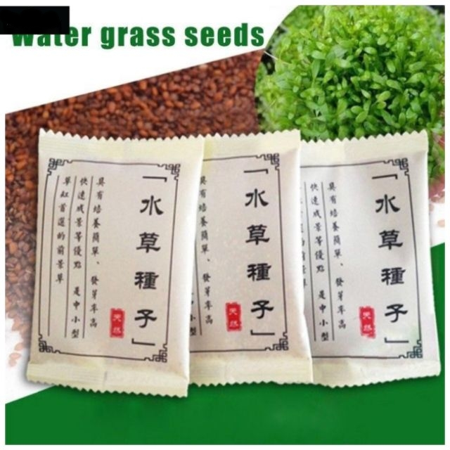 Aquarium Grass Aquatic Plant Seeds Fast Seeds Water Grass Seeds Well Packed