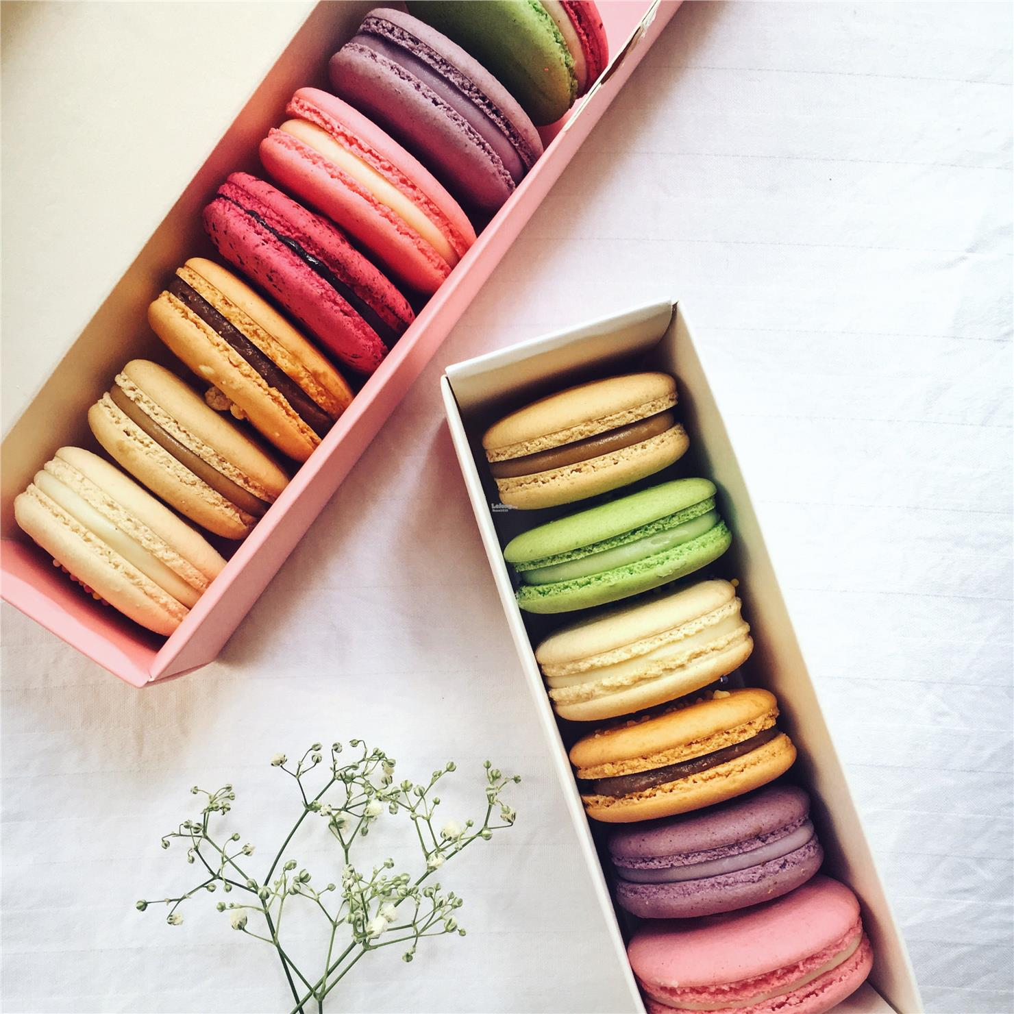 Assorted Flavored French Macaroons (DON'T BUY TESTING ONLY)