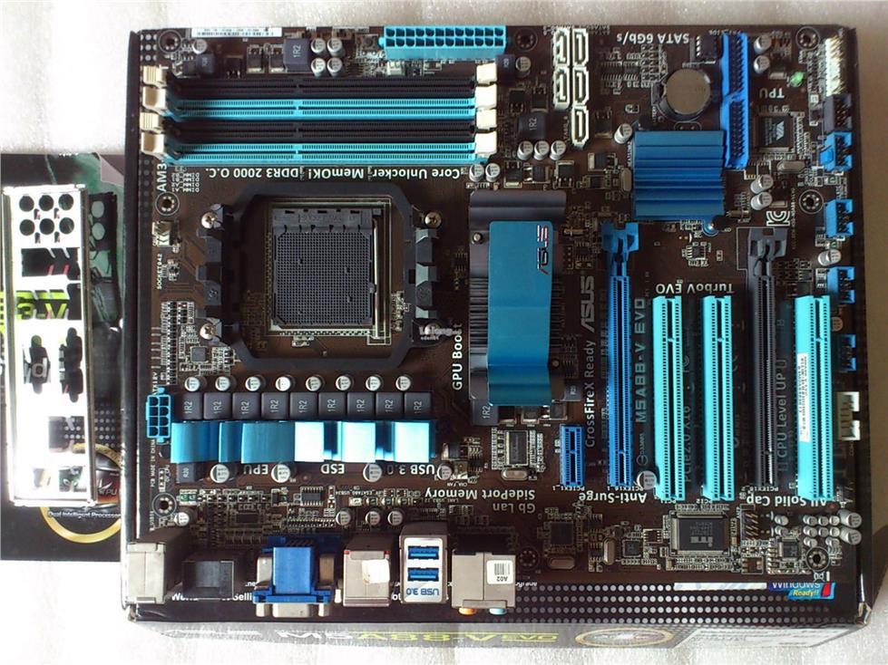Asus M5A88-V EVO Disk 64 BIT