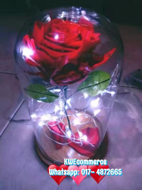 Beauty And The Beast Preserved Fresh Flower Eternal Red Rose