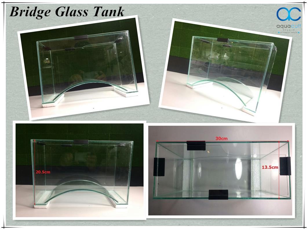 Bridge Glass Tank Aquascape Aquatic Plant Vivarium Fish