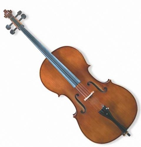Bulcario Turroni BTCE-E800 4/4 Cello (Student Model)