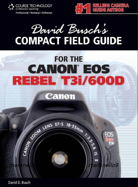 canon eos rebel t3i 600d guide to end 8 18 2018 11 59 pm rh lelong com my canon t3i tips and tricks canon t3i guide