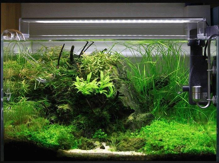 Chihiros A Series A801 Aquarium Freshwater Planted Tank Led Light & Chihiros A Series A801 Aquarium Fres (end 5/3/2019 10:51 PM)