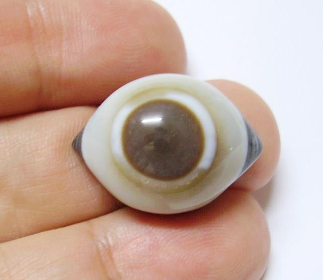 D01 Rare Tibetan Goat Eye Agate Dzi Bead Pendant Necklace Cord 29.65ct