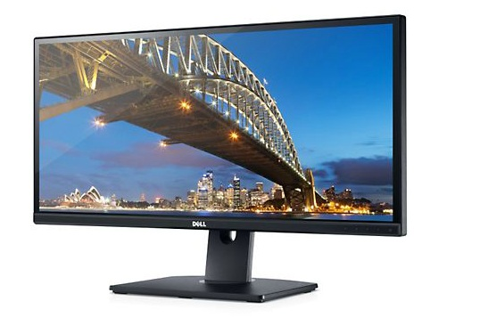 DELL 29' ULTRA SHARP IPS LED MONITOR (U2913WM) VGA/DVI/HDMI/DP/MINI DP