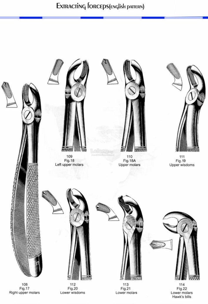 Dental Extracting Forceps 112(Fig 20) - Lower Wisdoms