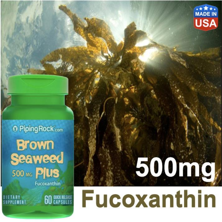 Help on Detox, Figestion, Heart & Virus, Brown Seaweed Plus 500mg (US)