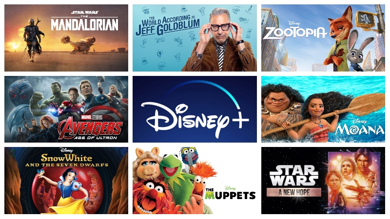 DISNEY PLUS PREMIUM ACCOUNT LIFETIME - Big Express