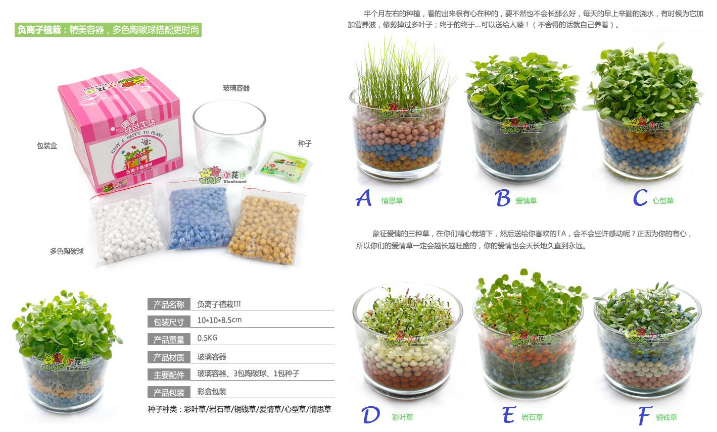 Diy office mini plant with pots litm end 8 8 2015 4 15 pm What are miniature plants grown in pots called